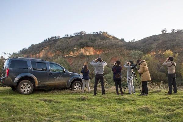 Wildroots Extremadura - Guías de naturaleza
