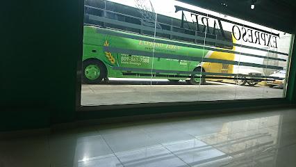 Tarea Bus