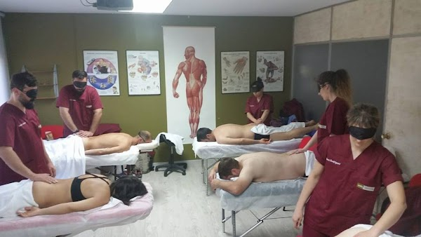EOTS Escuela de Osteopatía y Técnicas para la Salud
