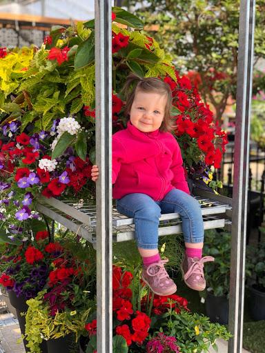 Jardinerie Villiard / Serres & Jardins à Saint-Aimé (QC) | LiveWay