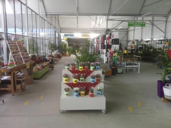 Centro de Jardinería y Floristería Laraflor - Viveros Valdespartera