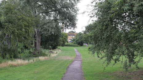 Local Plumber in Woodside Park