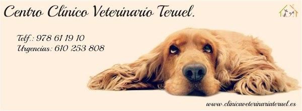 Centro Clínico Veterinario Teruel