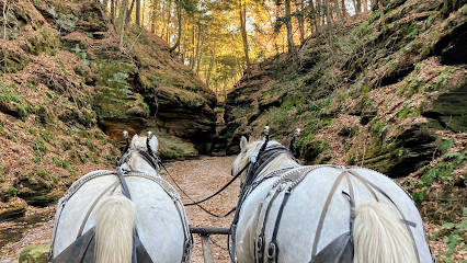 experience-wisdells-things-to-do-lost-canyon-horse-tours