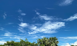 Indian River Lagoon Preserve State Park