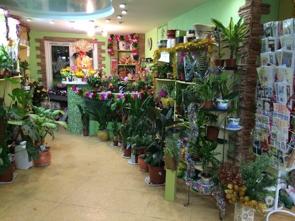 Цветочный магазин долина цветов