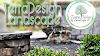 TerraDesign & Landscape logo