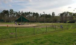 Cattail Park