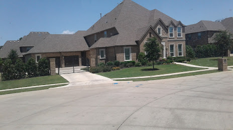Tree Services in Colleyville