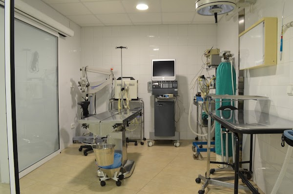 Clínica Veterinaria Mendieta