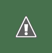 SoSMART Solar