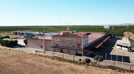 Bodegas Group Yllera
