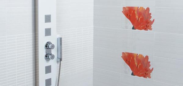 ALBAÑILERIA LUIS. reforma gratis tu baño. o cambia bañera por plato ducha