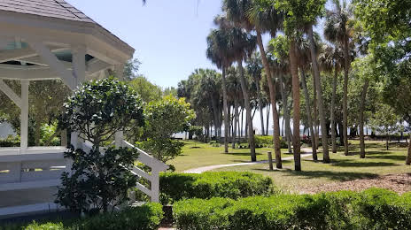 Tampa Turf and Artificial Grass in South Tampa, FL