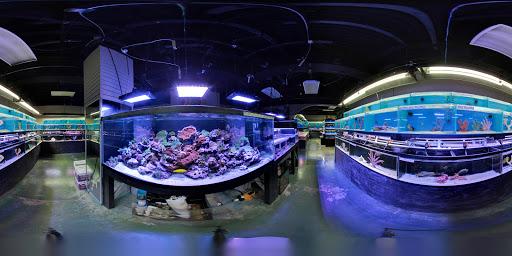 Tropical Fish Store «Optimum Aquarium», reviews and photos, 840 Ernest W Barrett Pkwy NW #700, Kennesaw, GA 30144, USA