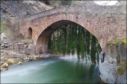 Puente de la Hiedra