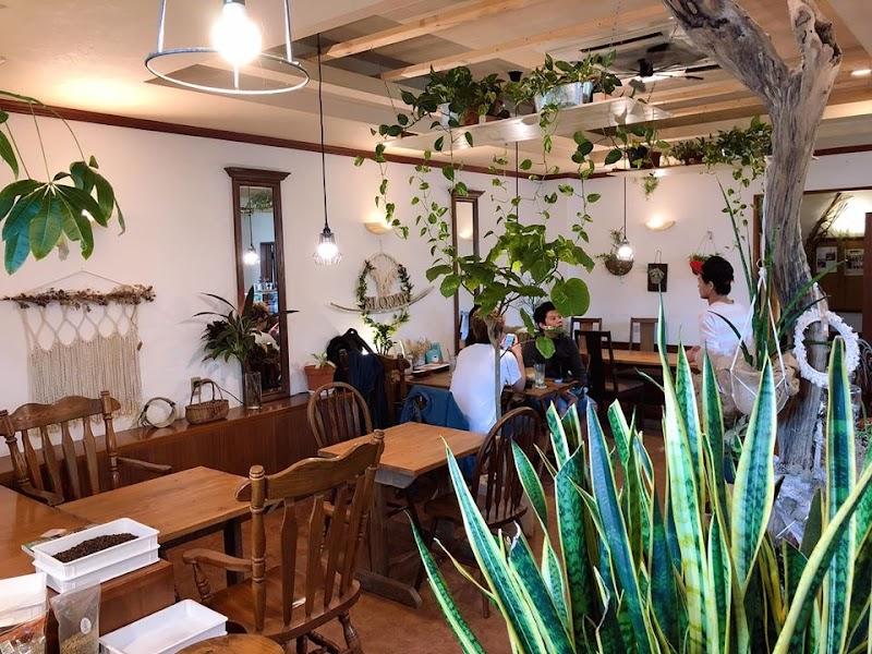 bloom coffee okinawa (ブルームコーヒーオキナワ)