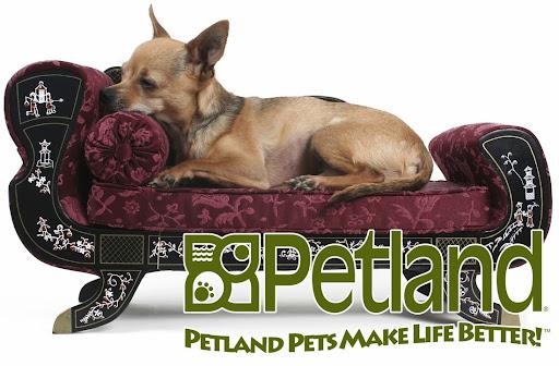 Pet Store «Petland Pensacola», reviews and photos, 6235 N