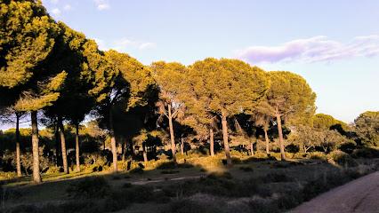 Parque periurbano Dehesa Matallana