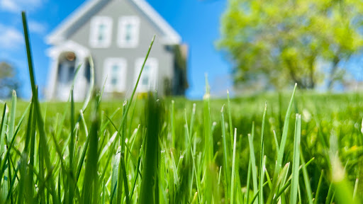 Entretien de pelouse Renew-a-lawn Kingston à Kingston (ON) | LiveWay