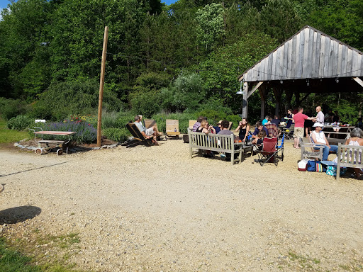 Tourist Attraction «Adventure Farm», reviews and photos, 1135 Clan Chisholm Ln, Earlysville, VA 22936, USA