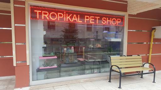 Tropikal Pet Shop