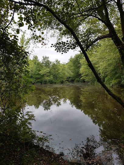 Nature preserve Idylwild Natural Area