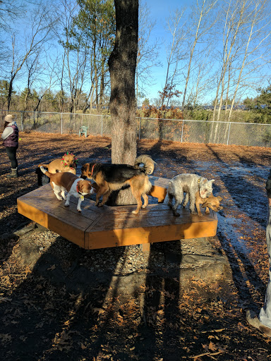 Dog Park «Maynard Dog Park», reviews and photos, 128 Waltham St, Maynard, MA 01754, USA