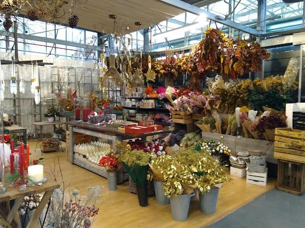 Endanea Garden Center