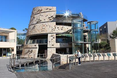 Aquarium Cabrera