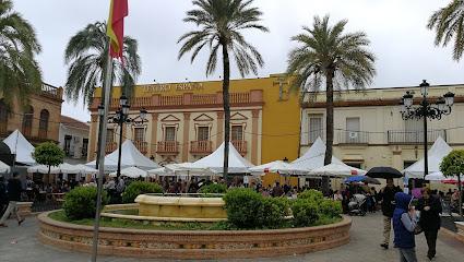 City Council of Palma del Condado
