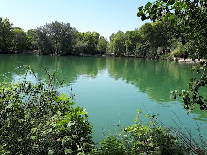 Albufera of Anna - Lake