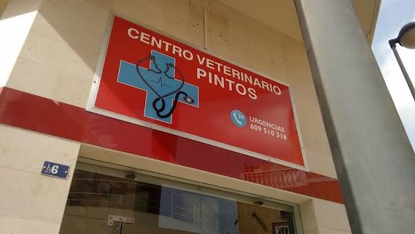 Centro Veterinario Pintos
