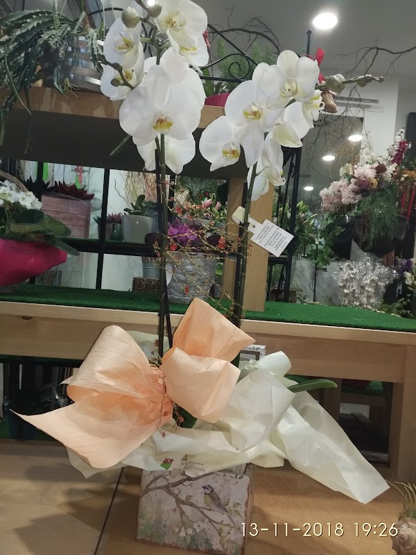 FELIÑARÁN floristas