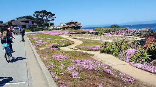 Golf Course «Pacific Grove Golf Links», reviews and photos, 77 Asilomar Ave, Pacific Grove, CA 93950, USA