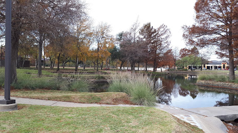 Tree Services in Farmers Branch