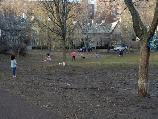 Park «Griggs Park», reviews and photos, 33 Griggs Rd, Brookline, MA 02446, USA