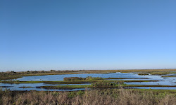 T. M. Goodwin Waterfowl Mgmt Area