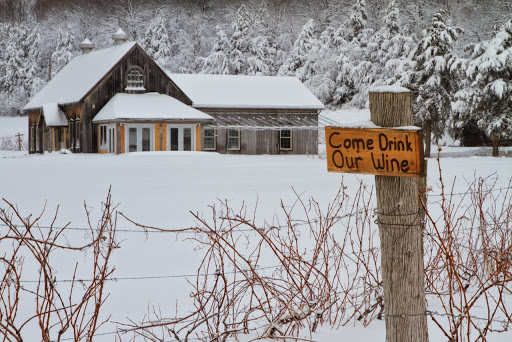 Winery «Snow Farm Vineyard & Winery», reviews and photos, 190 W Shore Rd, South Hero, VT 05486, USA