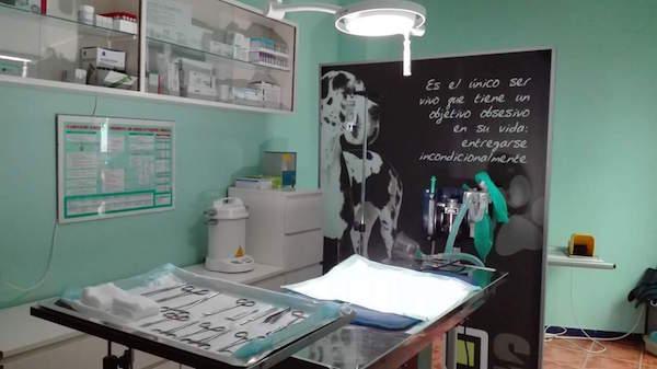 Centro Veterinario Dunas