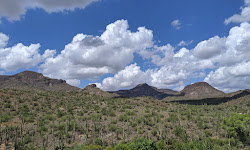 Spur Cross Ranch Conservation