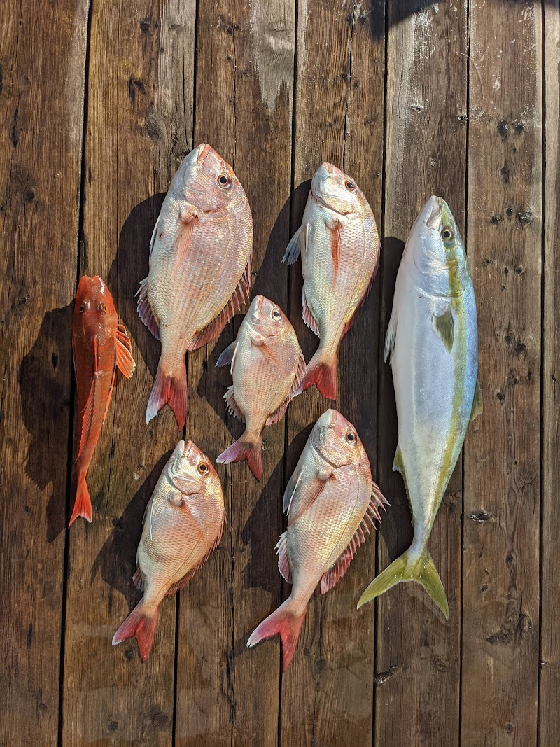 東京湾タイラバ釣りの辰丸、チャーター、乗り合いOK