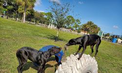 Pieloch Dog Park