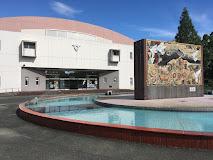 鳥栖市民体育館の画像