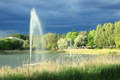 Entorno del Lago