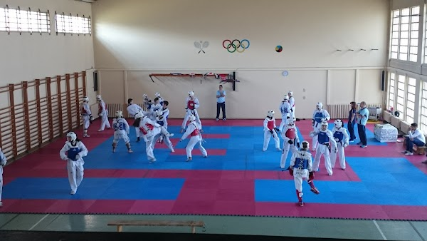Club de taekwondo Mace Sport