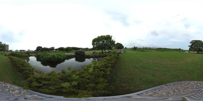 馬込川みずべの公園