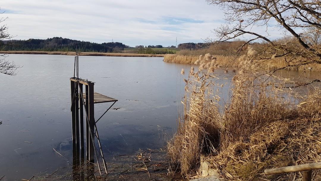 Maisinger See In Der Stadt Starnberg