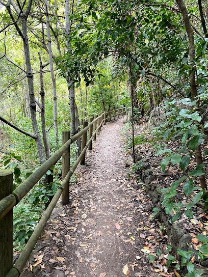 Reserva Natural Especial de los Tilos