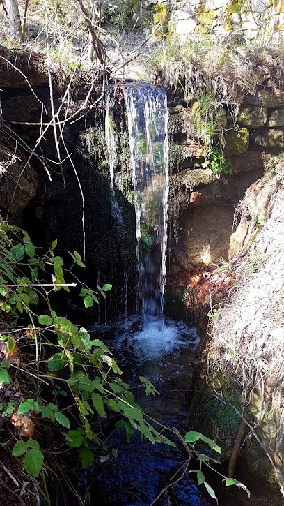 Centro de educación ambiental Arboreto Luis Ceballos